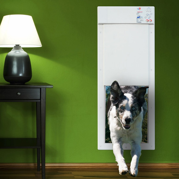Power Pet Electric Pet Door Gives Fido The Freedom He