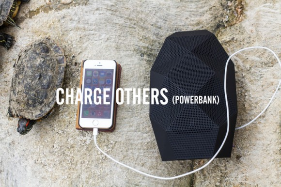 big-turtle-speaker-charge