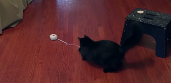 mousr-cat-toy-action