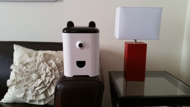 petbot-on-couch