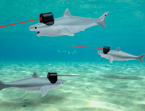 school-of-sharks-with-laser-beams