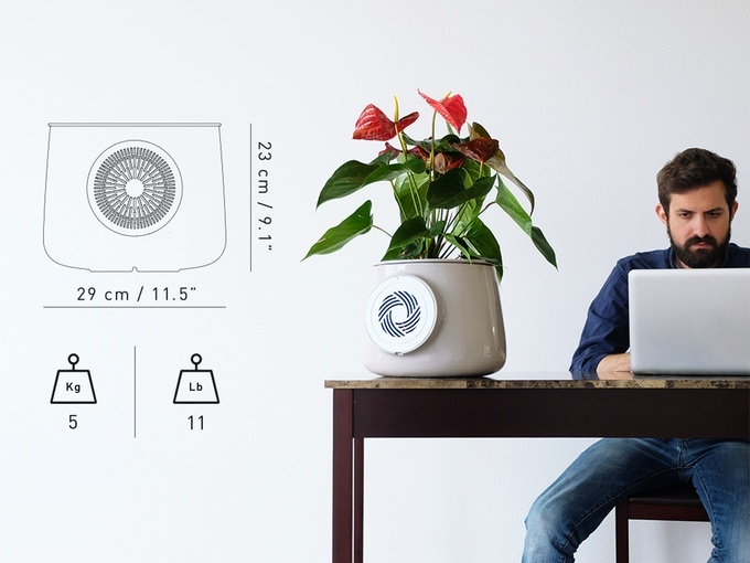 clairy-natural-air-purifier-size-weight