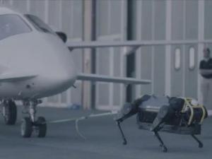 Robot Dog, bots, robots, robotics, HyQReal, ray bradbury, fahreinheit 451, mit, itt